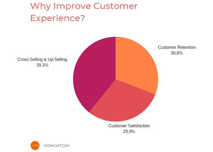 customer-experience-pie-chart